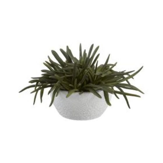 Planta-Suculenta-Artificial-