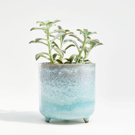 Matera-Zea-Azul-Pequeña